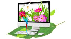 Création Graphique & mise en page - Services ISP
